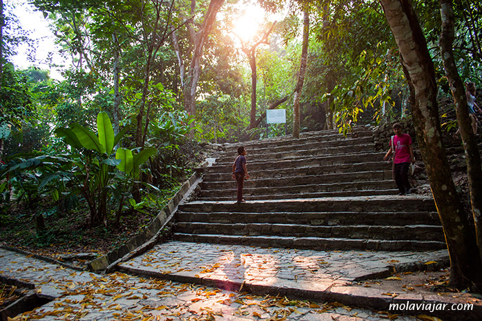entrada zona palenque