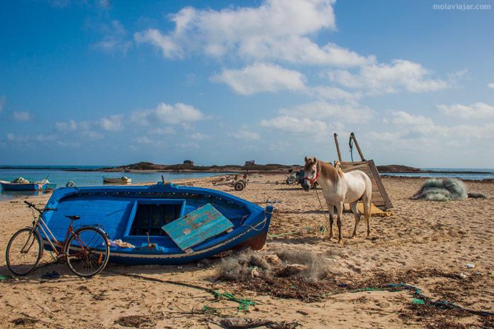 playa de djerba