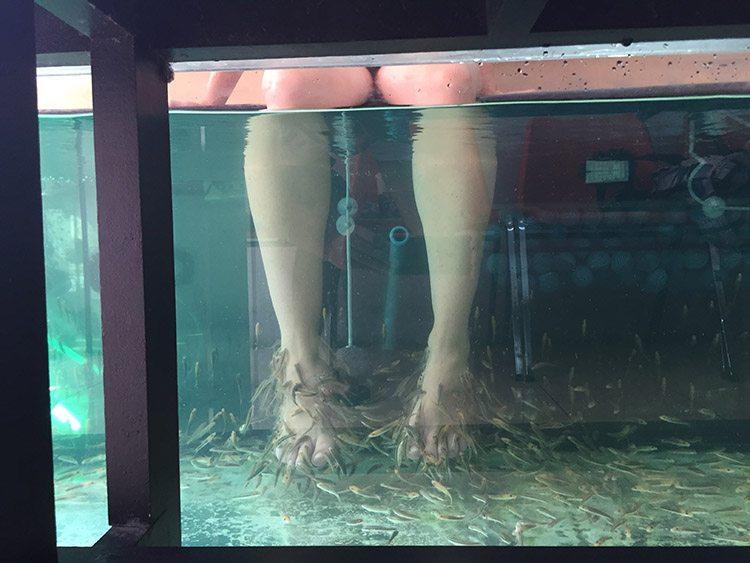 fish masaje