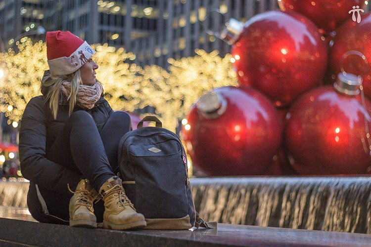 Navidades en Nueva York (video)